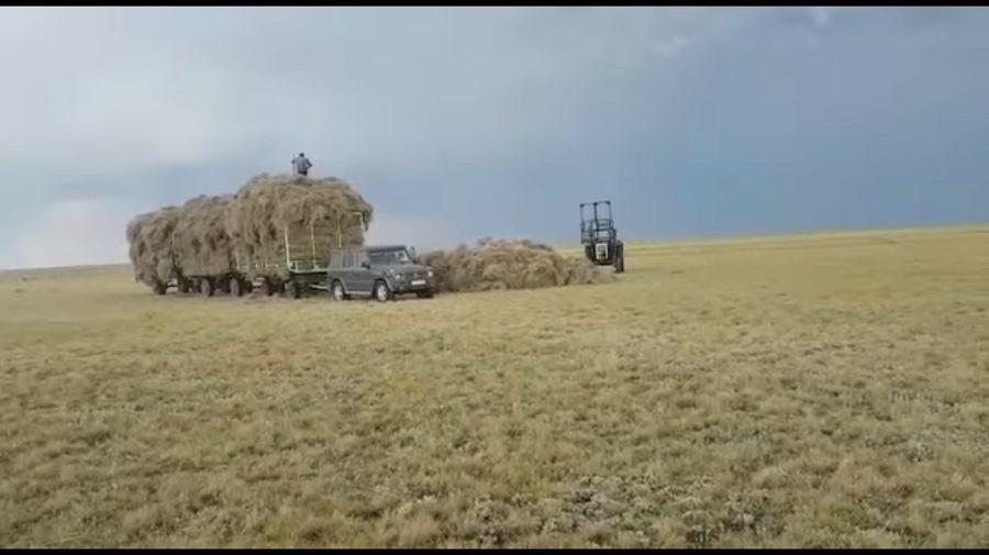 Суровый быт алтайских фермеров