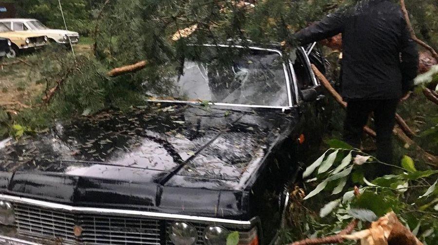 Упавшее от урагана дерево сильно повредило редкий лимузин ГАЗ-14 «Чайка»