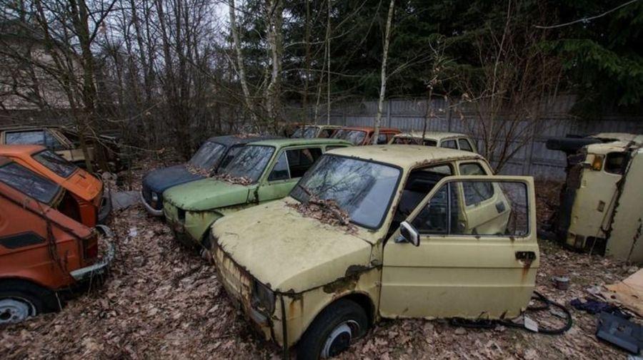 Несколько десятков старых автомобилей ржавеют где-то под Варшавой (есть советские!)